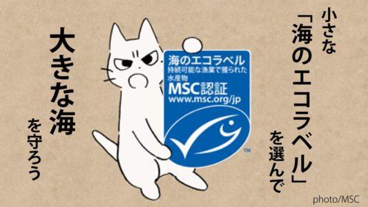 小さな「海のエコラベル」を選んで、大きな海を守ろう~キャンペーン開催中~